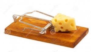 мыше-овка-с-сыром-52197401